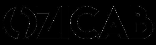 Ozicab Web Tasarım